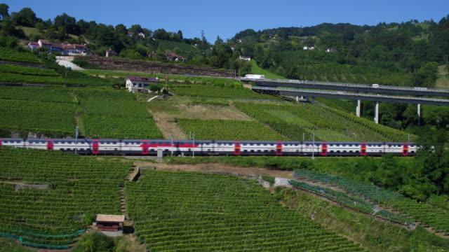 Blick auf die Weinberge des Lavaux, UNESCO