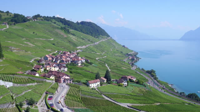 view of vineyards of Lavaux, UNESCO