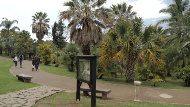 view of visitors in botanical gardens, funchal, madeira, portugal, atlantic, europe - madeira stock videos and b-roll footage