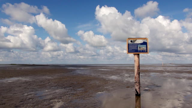 ws view of wadden sea and signboard, north sea north frisia / westerhever, schleswig holstein, germany - nordfriesische inseln stock-videos und b-roll-filmmaterial