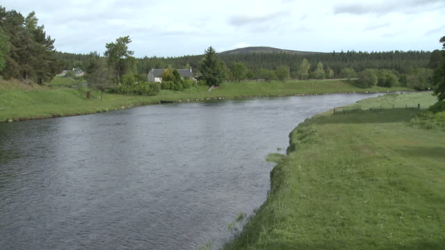 WS PAN View of water flowing on river / Cromdale, Speyside, Scotland