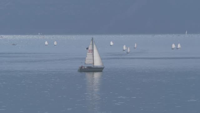 view of water sport activity on lake garda near riva del garda, lake garda, province of trento, italy, europe - セーリング点の映像素材/bロール