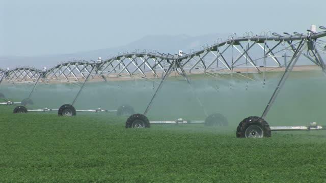 vídeos y material grabado en eventos de stock de view of water sprinkling in the field of wyoming united states - usa