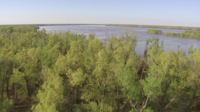 WS AERIAL View of water to flood in Mississippi river with trees / Mississippi, United States