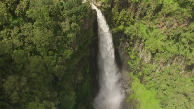 vídeos y material grabado en eventos de stock de ws aerial vertical view of waterfall in dense rainforest / kenya - kenia