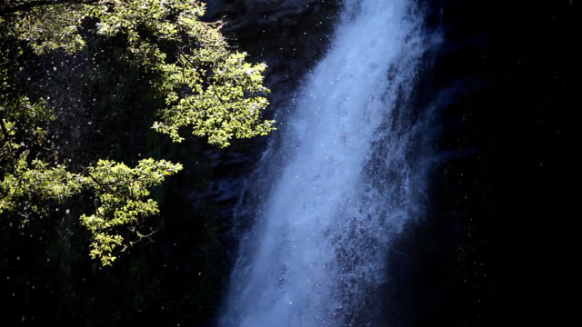 View of waterfall in Shanlinxi Forest Recreation Area (Popular tourist attractions)