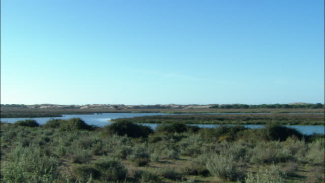 WS PAN View of wetland marshes / Doí±ana National Park , Huelva & Sevilla, Spain