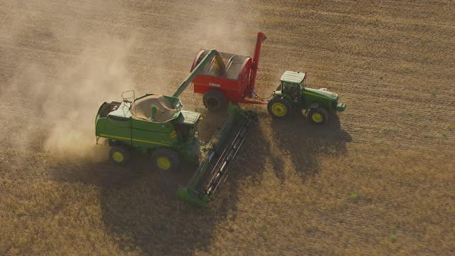 vídeos de stock, filmes e b-roll de ws aerial zi zo ds ts view of wheat harvesting and wheat loading in trailer / colligen creek deniliqiun, new south wales, australia - 2012