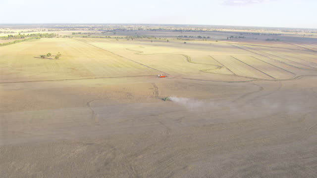 WS AERIAL View of Wheat Harvesting / Colligen Creek Deniliqiun, New South Wales, Australia