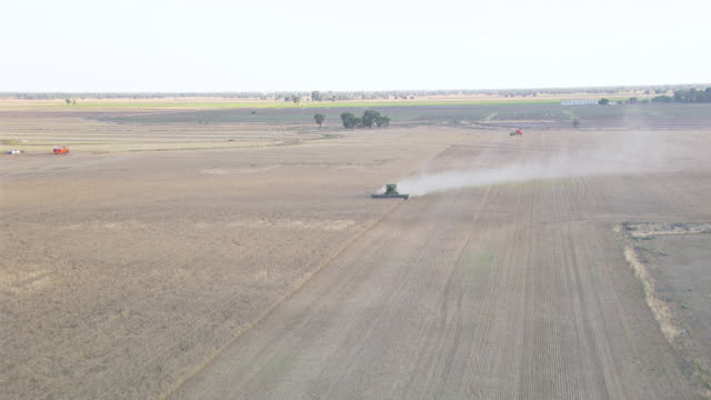 WS AERIAL ZI View of Wheat Harvesting / Colligen Creek Deniliqiun, New South Wales, Australia