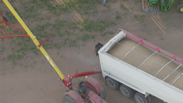 WS AERIAL DS ZI ZO View of Wheat loading in grain storage bin from truck / Colligen Creek Deniliqiun, New South Wales, Australia