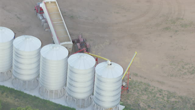 WS AERIAL ZI ZO View of Wheat loading in grain storage bin from truck / Colligen Creek Deniliqiun, New South Wales, Australia