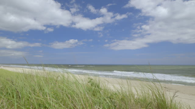 WS PAN View of Wiborg Beach with grassy landscape / East Hampton, Suffolk County, New York State United States