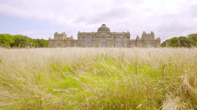 WS View of wild grass in foreground and Gosford House in background / East Lothian, United Kingdom