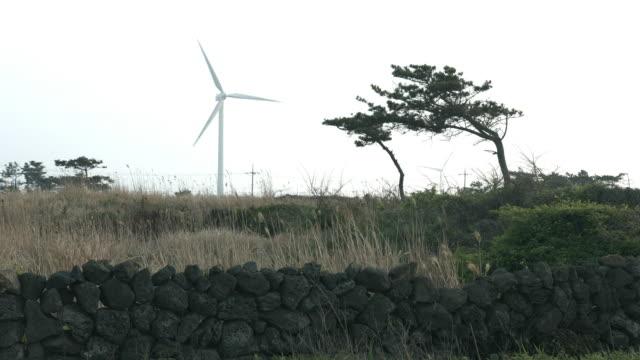 View of wind turbine located near barley field in Jeju Island