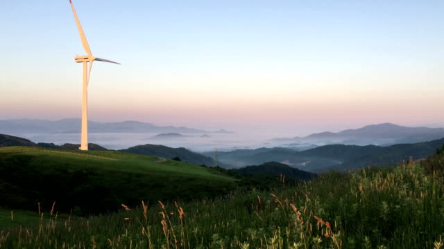 View of wind turbine on green fields of Daegwallyeong Sky Ranch (popular travel destination)