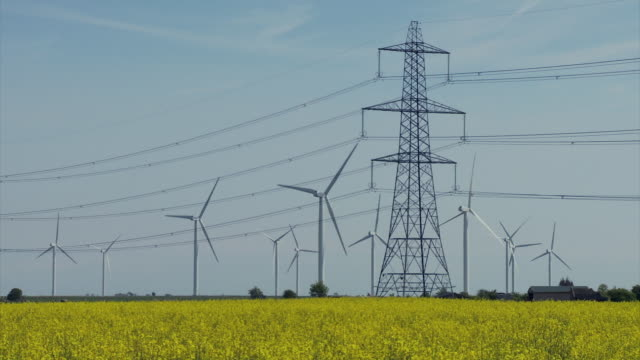 ws view of wind turbines and electricity pylons through rape seed crop / walland marsh, sussex, uk - hochspannungsmast stock-videos und b-roll-filmmaterial