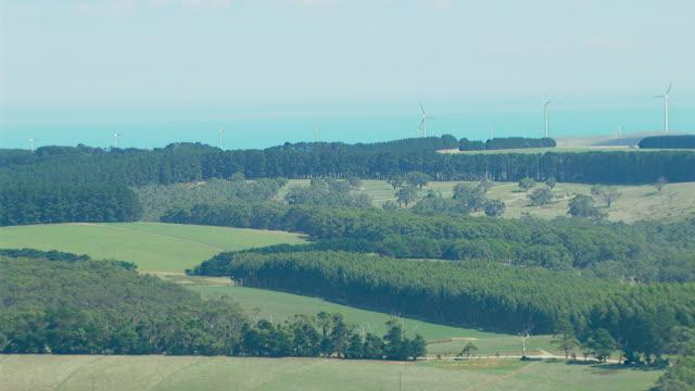 ws aerial view of windmills with wooded area near ocean / adelaide, south australia, australia - einige gegenstände mittelgroße ansammlung stock-videos und b-roll-filmmaterial
