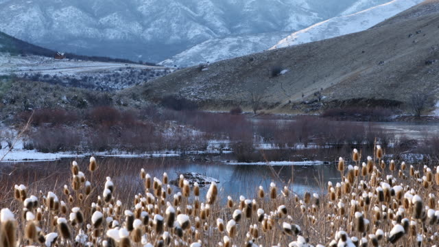view of winter landscape layers around a lake - thistle stock videos & royalty-free footage