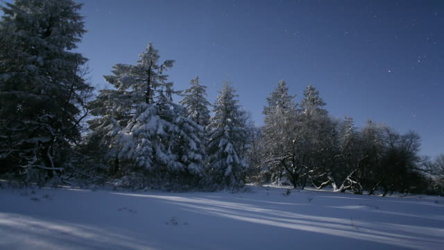 ws pan t/l view of winter landscape with trees during winter from dusk to dawn /rothaargebirge, germany - 30 seconds or greater stock videos & royalty-free footage