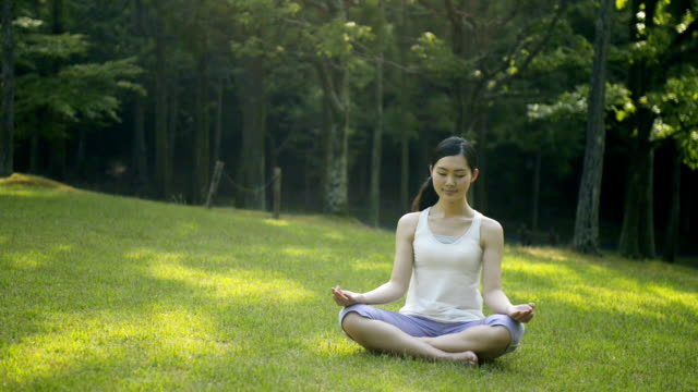 ws view of woman doing yoga on lawn in park / joyo, kyoto, japan - schneidersitz stock-videos und b-roll-filmmaterial