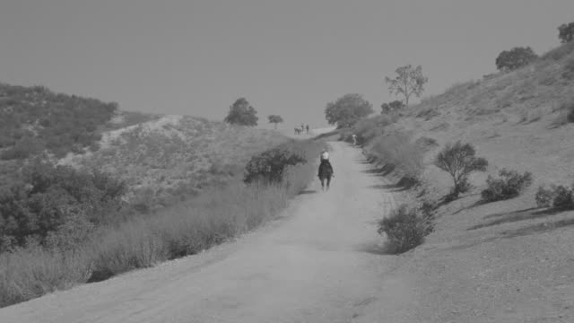 stockvideo's en b-roll-footage met ws view of woman riding horse over hill with talking road person in countryside going away - alleen één mid volwassen vrouw