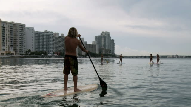 ws view of women and man riding paddle boards in harbor / miami beach, florida, usa - newoutdoors stock videos & royalty-free footage