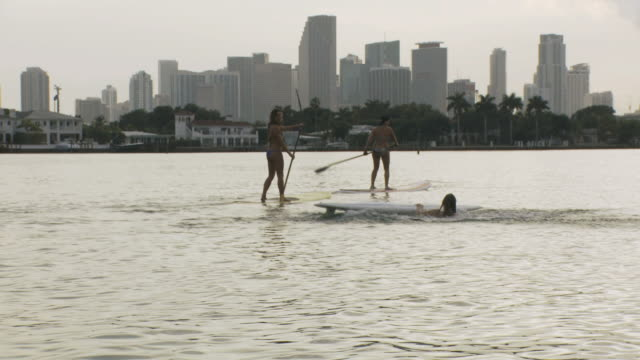 ws pov view of women riding paddle boards and woman falls off into water / miami beach, florida, usa - missöde bildbanksvideor och videomaterial från bakom kulisserna