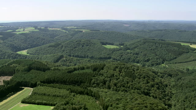WS AERIAL View of wooded area with farm land / Walloon Region, Belgium