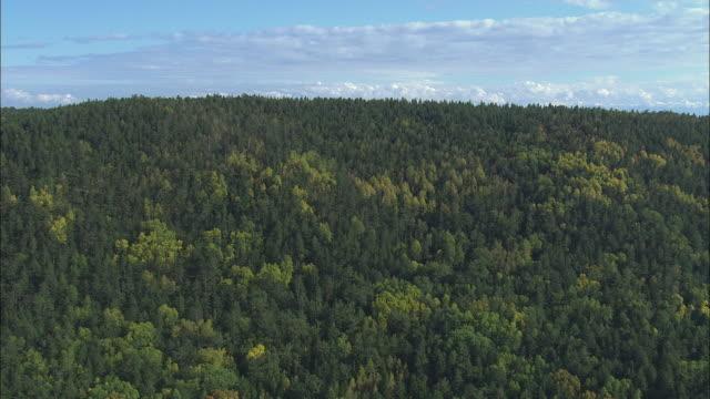 ws pov aerial view of wooded mountains and lake baika / lake baikal, siberia, russia  - russia 個影片檔及 b 捲影像