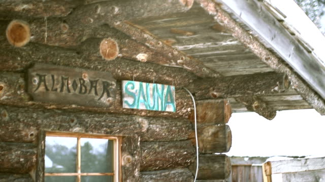 view of wooden house with eagle sculpture - sauna stock videos and b-roll footage