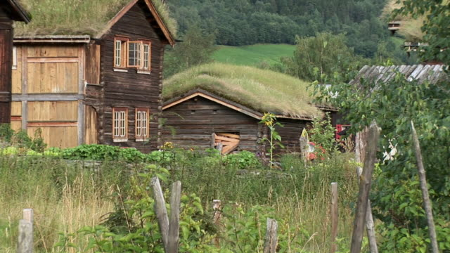 ws zo view of wooden house with grass roof / finnmark, norway - strohdach stock-videos und b-roll-filmmaterial