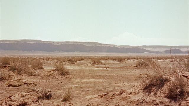 ms view of  wounded black cavalryman riding across desert  - arbetsdjur bildbanksvideor och videomaterial från bakom kulisserna
