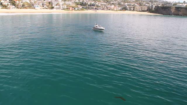 ws aerial pov view of yacht boat parking on beach / laguna beach, california, united states - カリフォルニア州 ラグナビーチ点の映像素材/bロール
