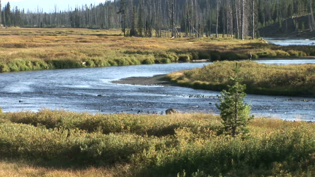 View of Yellowstone mountain river in Wyoming United States