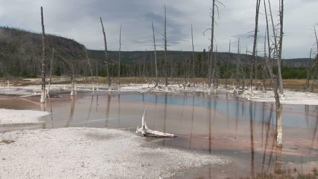 vídeos y material grabado en eventos de stock de view of yellowstone national park in wyoming united states - usa