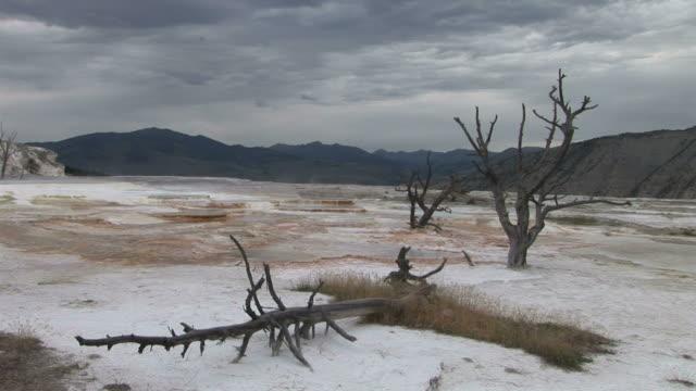vídeos y material grabado en eventos de stock de view of yellowstone national park in wyoming united states - menos de diez segundos