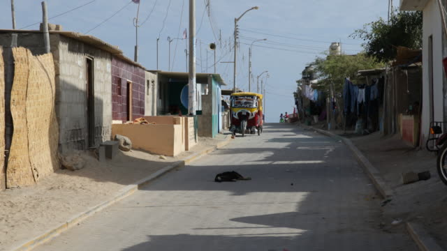 view on a road with houses and a parked rickshaw a dog is lying on the road in tortuga peru - れんが造りの家点の映像素材/bロール