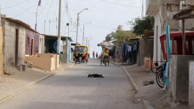 vídeos y material grabado en eventos de stock de view on a road with houses and a parked rickshaw a dog is lying on the road in tortuga peru - casa de ladrillo