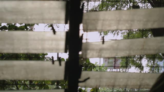 vidéos et rushes de view out window of shack homes - ouverture du diaphragme