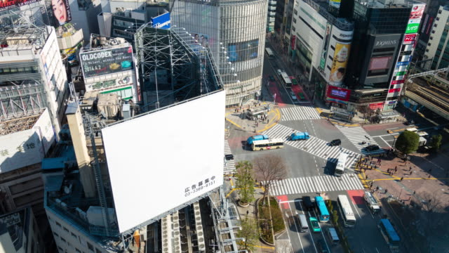 ws t/l ha view over crossing at noon / shibuya ku, tokyo, japan - rx stock videos & royalty-free footage