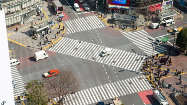 vídeos de stock e filmes b-roll de ms t/l ha view over crossing at noon / shibuya ku, tokyo, japan - rx