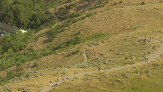 vidéos et rushes de ms aerial zo view over family walking dog and city / bozeman, montana, united states - bozeman