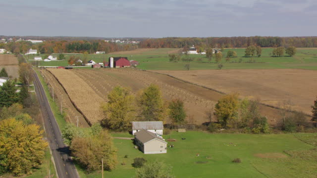 vidéos et rushes de ws aerial view over farmland at amish farm in richland county / ohio, united states - amish
