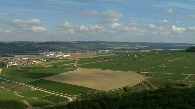 AERIAL WS View over fields and rural town / Chablis, France