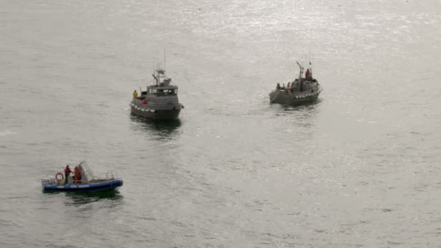 WS AERIAL View over fishing boats and flying by state trooper motor boat in Egegik Bay / Alaska, United States