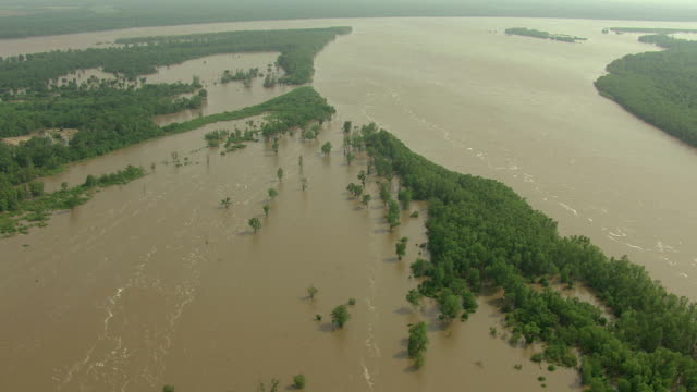 WS AERIAL View over flooded Mississippi River in Bolivar County with trees under water / Mississippi, United States