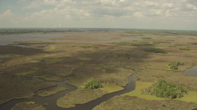 WS AERIAL View over marshland of water and vegetation / Florida, United States