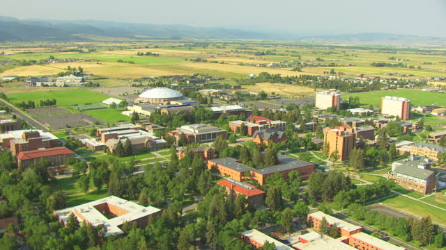 vídeos de stock, filmes e b-roll de ws aerial view over montana state university buildings with mountains / bozeman, montana, united states - bozeman
