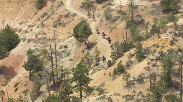 ws aerial zi view over people riding horses along path at bryce canyon / utah, united states - bryce canyon stock videos & royalty-free footage
